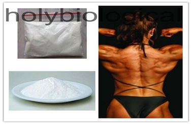 China 2446-23-3 Anabolic Oral Steroids 4-Chlorodehydromethyltestosterone For Muscular Endurance Gain supplier