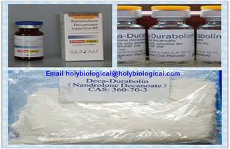 China Anabolic Steroid Powders Nandrolone Steroids Nandrolone Decanoate Deca Durabolin supplier