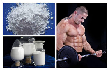 China White Powders Muscle Building Steroids Lidocaine Hydrochloride For Bodybuilding supplier