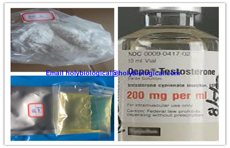 Muscle Growth Testosterone Steroid Hormone Enanthate Test Enanthate Powder