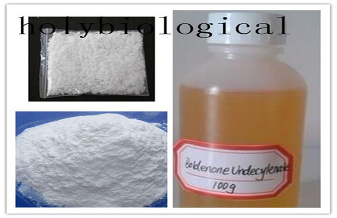 303-42-2 Legal Anabolic Supplements Methenolone Enanthate / Primobolan Enanthate Steroids